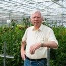 Wim Haytink, Alstroemeria Breeder