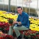 Dave Geerlings, Potchrysanthemum Breeder