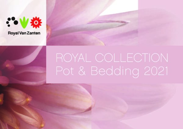 Royal Van Zanten Catalogus Pot&Bedding 2021