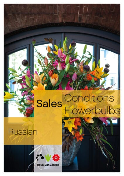 Sales Conditions Russian