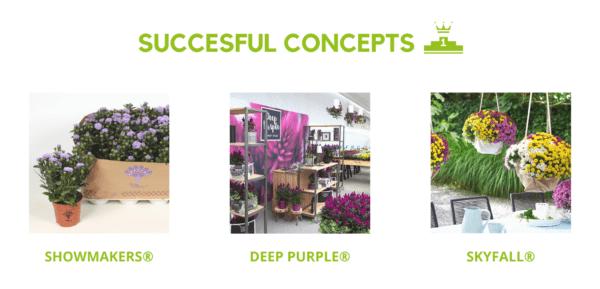 Royal Van Zanten succesful concepts - Flowertrials